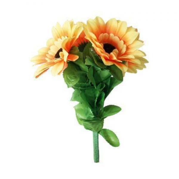 Amazing Split Sunflower by Premium Magic