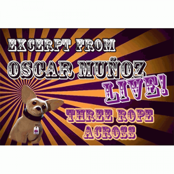 3 Rope Across  by Oscar Munoz (Excerpt from Oscar ...