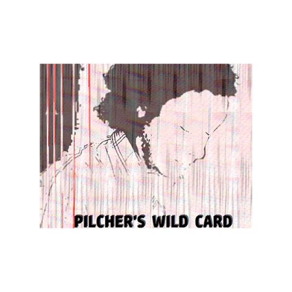 Pilcher's Wild Card by Matt Pilcher video DOWNLOAD
