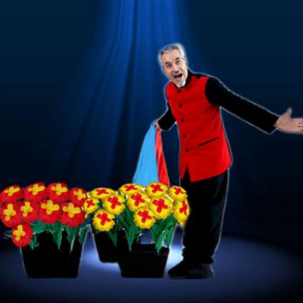 Dance of Flowers by Tora Magic