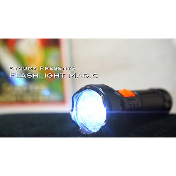 Magic Flashlight (2pk) by Tejinaya Magic