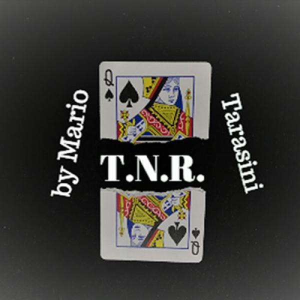 T.N.R. by Mario Tarasini video DOWNLOAD