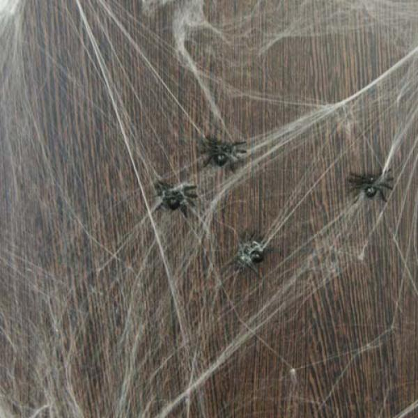 White fabric spider web with 6 spiders