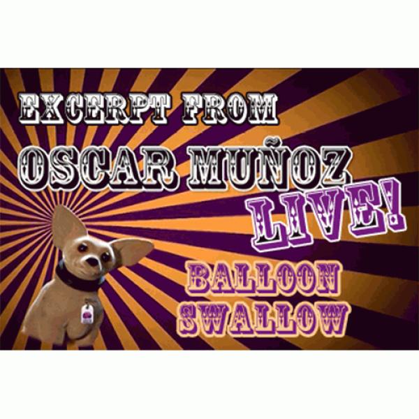 Balloon Swallow  by Oscar Munoz (Excerpt from Osca...