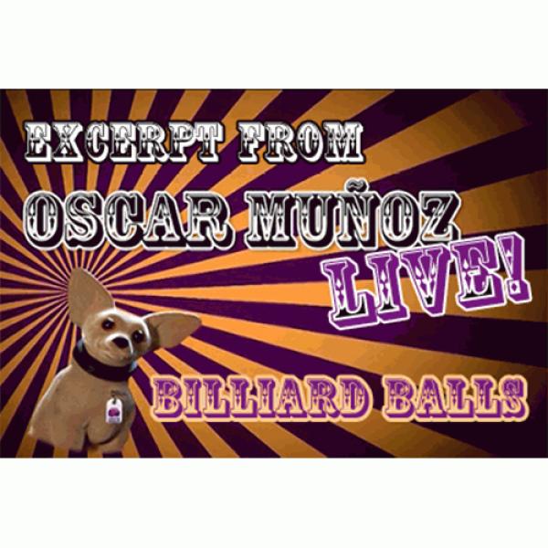 Billiard Balls  by Oscar Munoz (Excerpt from Oscar...