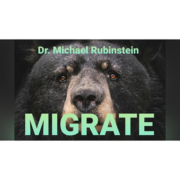 MIGRATE POKER CHIP by Dr. Michael Rubinstein